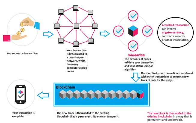 Blockchain Netword