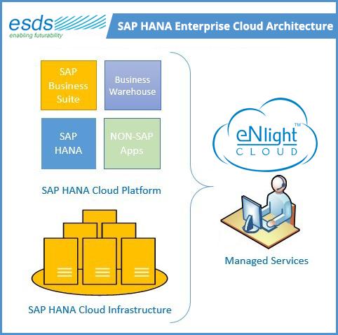 AP HANA Enterprise Cloud Architecture